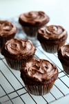 Thumbnail image for cupcakes.jpg